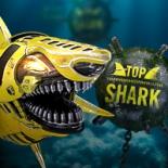 Top Shark Academy 2017