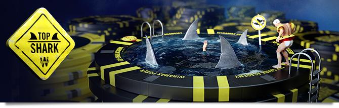 Top Shark Academy Bandeau