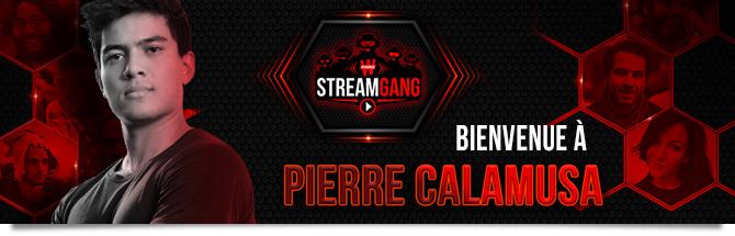 Camalusa Stream Gang