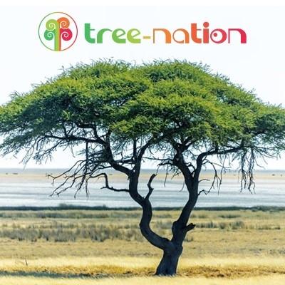 Plantez 10 arbres pour sauver la planète ! (Don de 30 euros)